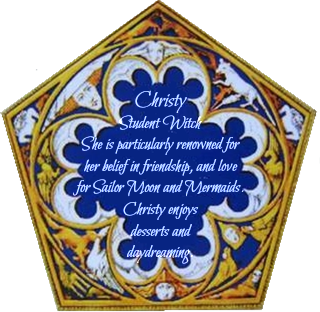 Chocolate Frog Card (bio)